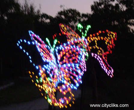 Citycliks the florida botanical gardens - Florida botanical gardens christmas lights ...